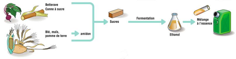 biocarburant essence